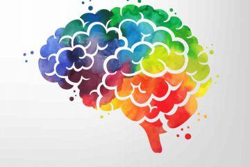 روانشناسی رنگها در طراحی صفحات وب